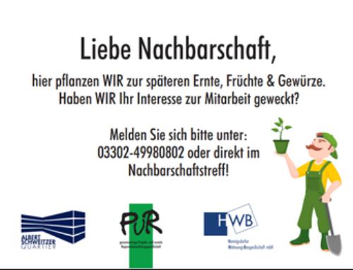 """""""Grüner Daumen"""" gesucht – zum Tag der Nachbarn am 28. Mai 2021"""